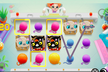 Play the NOT ENOUGH KITTENS Slots Online For Free or Real Money